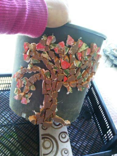 Kendin Yap, mozaik saksı yapımı, www.kendinyapsitesi.com